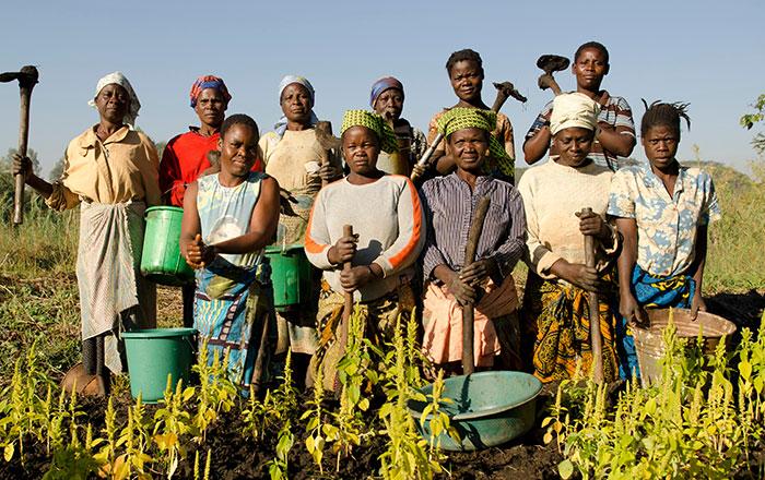 africa-progress-story