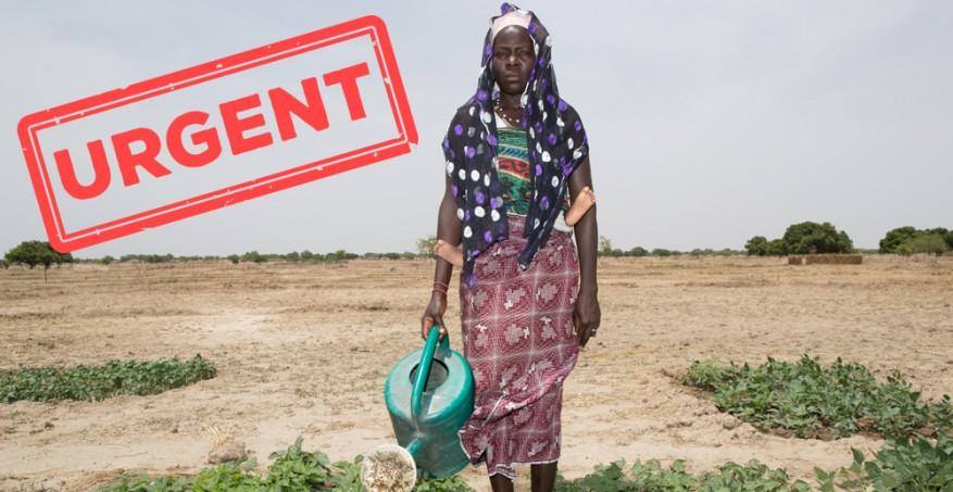 EastAfrica_appeal_urgent