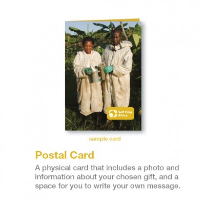 postal-card-sample