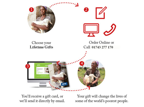 How buying Lifetime Gifts works