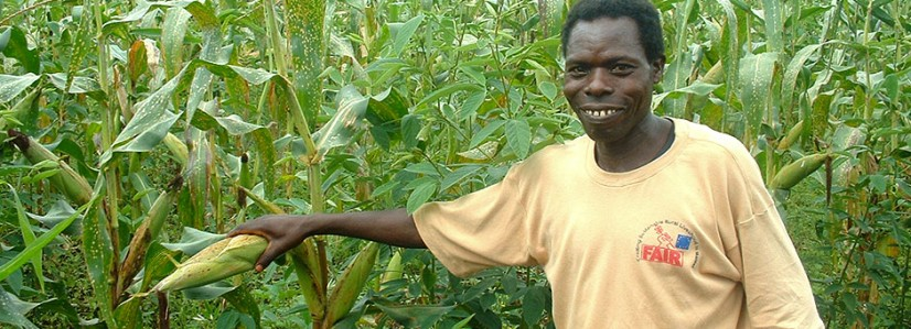 crop-doctor940
