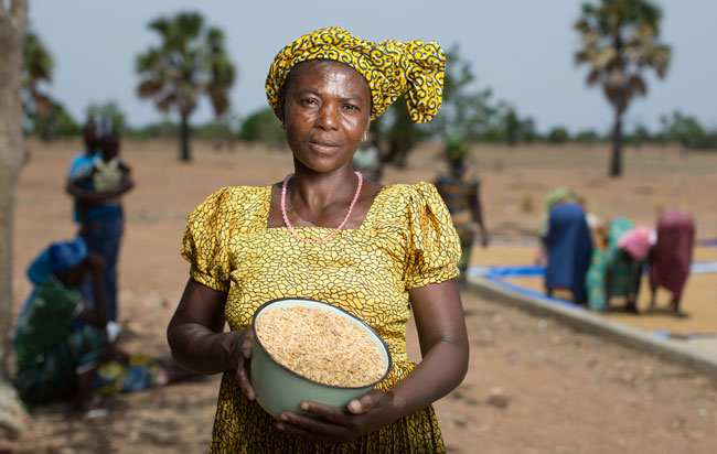 Rice business boosts incomes self help africa usa for Tonte
