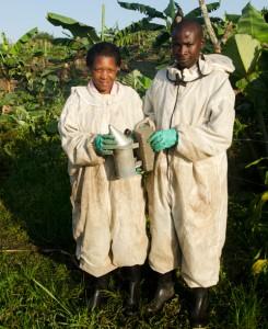 beekeepers2